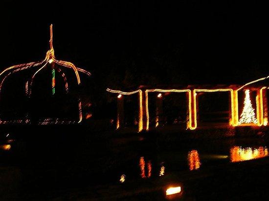 Konoba Catovica Mlini: Christmas lights