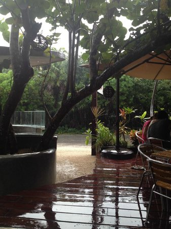 Coco Tulum : this is how it looksin a rainy day!
