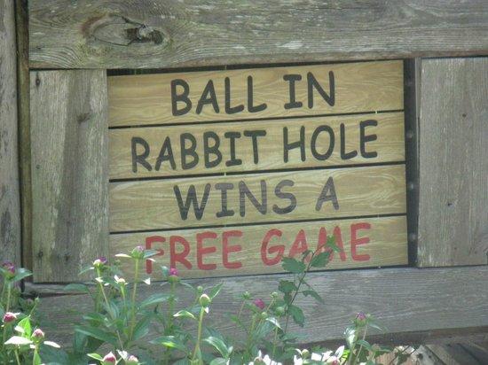 Ripley's Davy Crockett Mini Golf : DAVY CROCKETT MINI GOLF GATLINBURG TENN