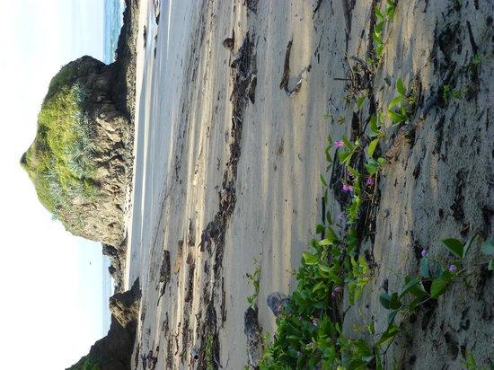 La Marejada Hotel: Playa Grande