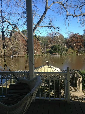 Violet Hill Bed and Breakfast: View from back porch to Cane River