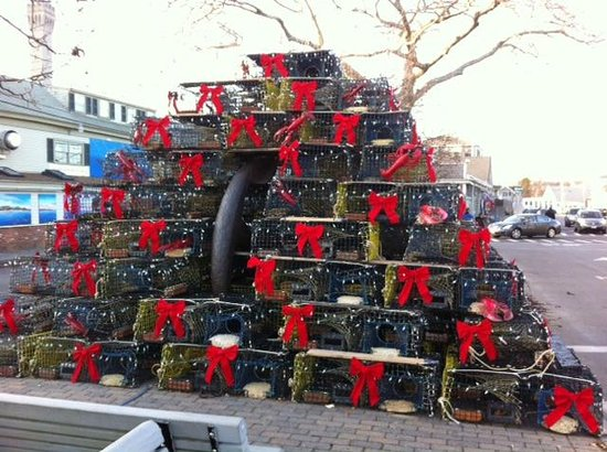 MacMillan Wharf: Lobster Pot Tree Decorated
