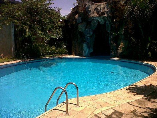 Bali Blue Diving PADI Resort: The swimming pool