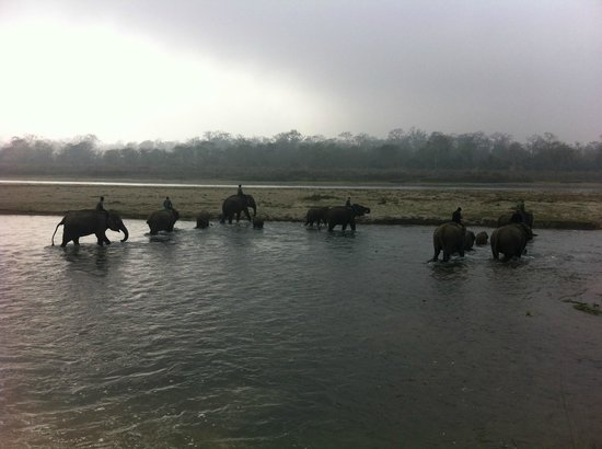 13-Day Guided Trekking Tour to the Everest Base Camp: Chitwan national park