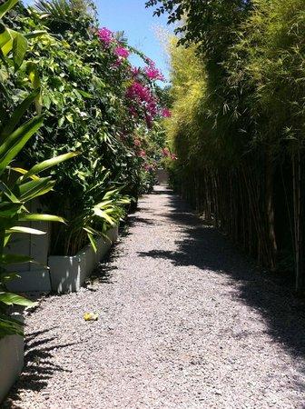 Goddess Retreats: Villa driveway