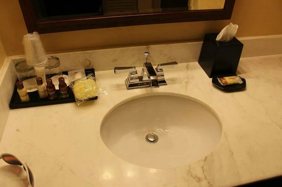 Sheraton Atlanta Perimeter North: Bathroom