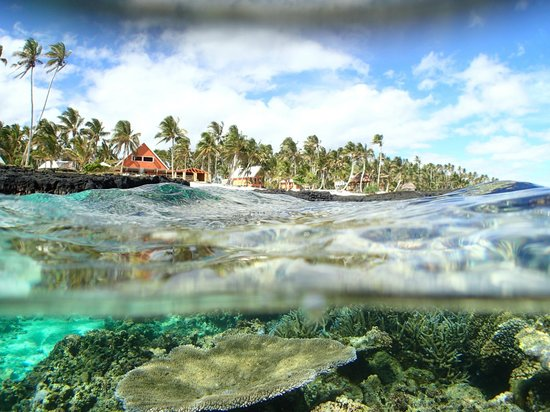 Sa'Moana Resort: snorkelling off the beach