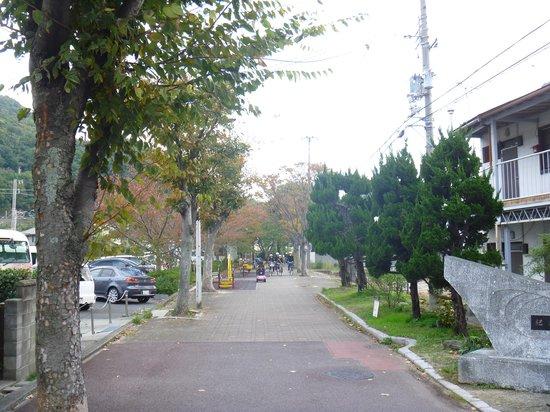 Kimiidera Ryokudo Path : 道路