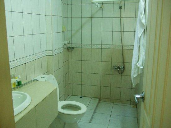 Coral Hotel & Spa: シングルルームのバスルームです