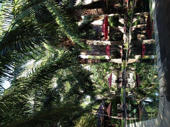 Segara Village Hotel : Schöne großzügige Gartenanlage