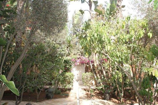 Riad des Golfs : Jardin extérieur