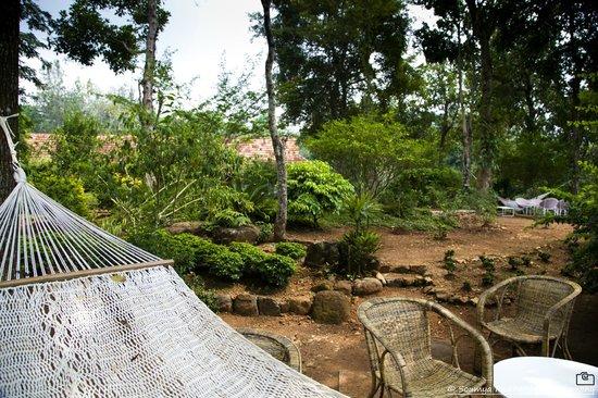 Rajakkad Estate: Hammocks around the garden