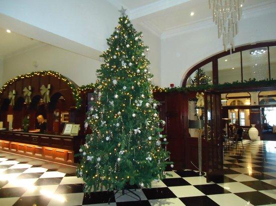 The Atlantic Hotel: Rection Area
