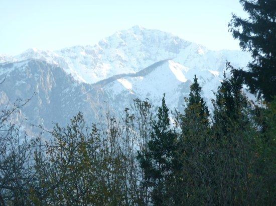 Borgo Le Terrazze: Surrounding mountains as seen from room balcony