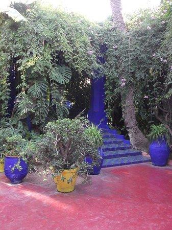 Dar Malaika: jardi majorelle