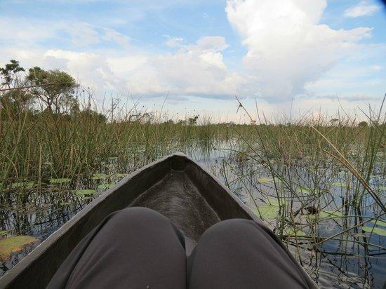 andBeyond Xudum Okavango Delta Lodge: Canoe ride from lodge