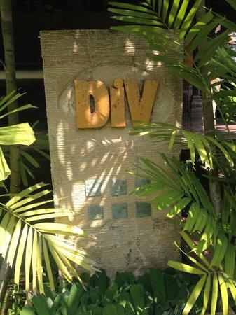DiV Spa