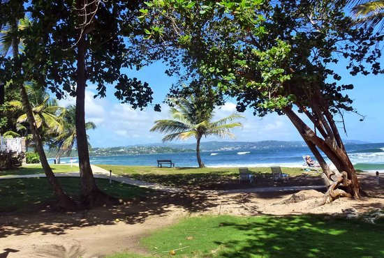 Magdalena Grand Beach & Golf Resort: View of Gardens, Sea and Scarborough (capital of Tobago)