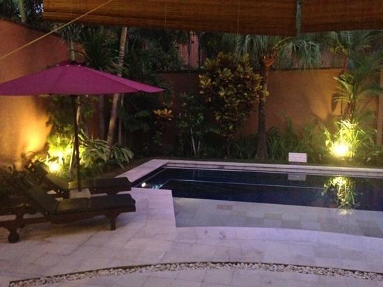 The Kunja Villas & Spa : pool