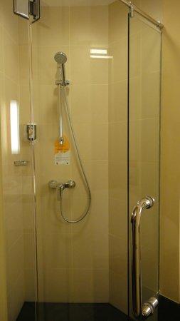 ibis Singapore Novena : shower stall