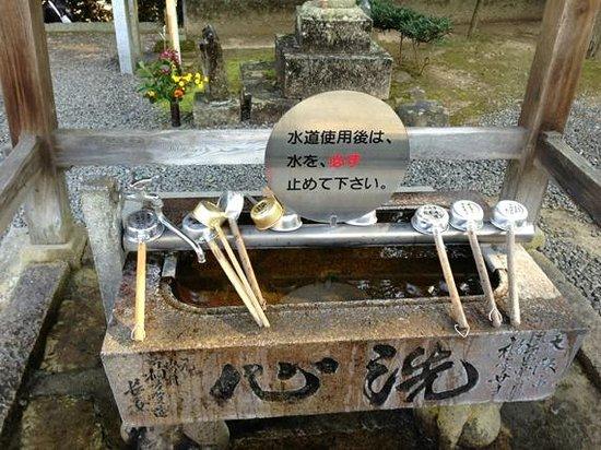 Daikoji Temple : 手水舎