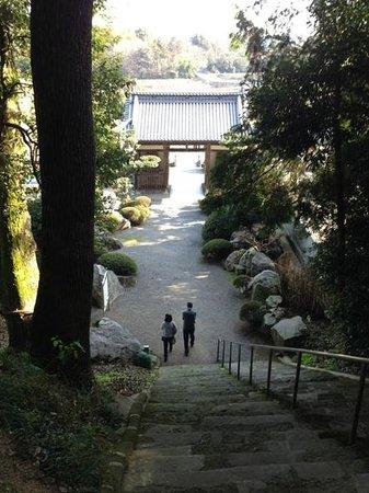 Daikoji Temple : 登り甲斐のある階段でした。