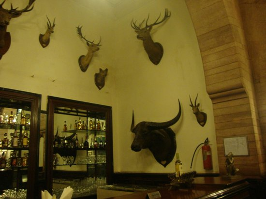 The Laxmi Niwas Palace: The Bar - decorated with hunting trophies