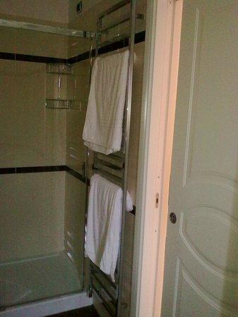 Hotel Sonya : Полотенцесушитель в ванной