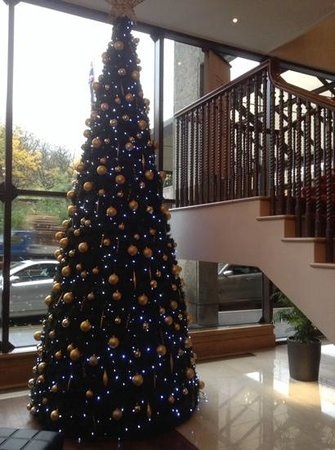 Bristol Marriott Hotel City Centre: one of the lovely trees at the hotel, very festive