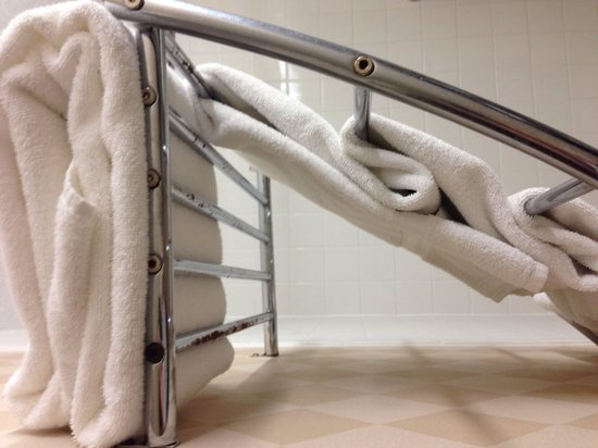 Four Points by Sheraton Kansas City Airport: Rusty towel bar that you will hit your head on.
