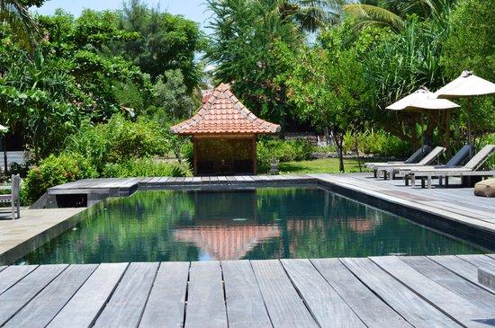 Desa Dunia Beda Beach Resort: The pool