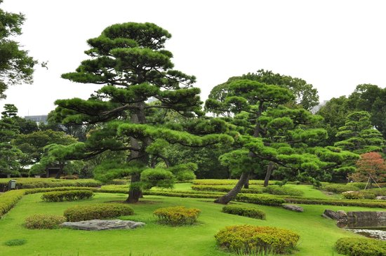 The East Gardens of the Imperial Palace (Edo Castle Ruin): jardin