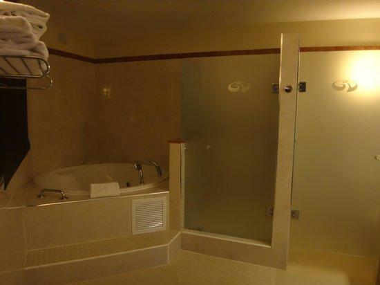 Grand Palladium Bavaro Suites Resort & Spa : Ванная комната