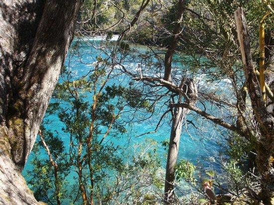 Los Alerces National Park : La belleza del Rio Verde en el Parque Nacional