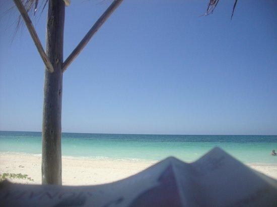 Hotel Cayo Levisa: Beach