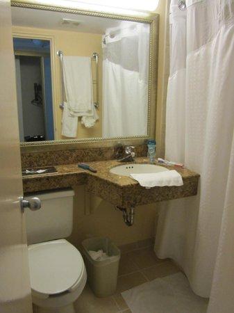 Holiday Inn Port of Miami Downtown: Banheiro