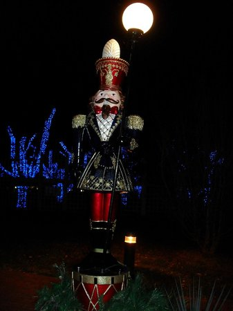 Meadowlark Botanical Garden : Soldier