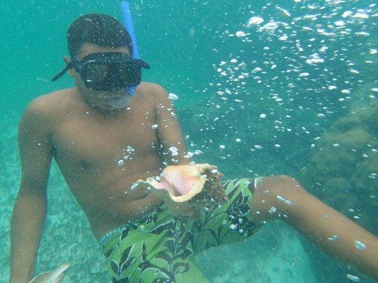 Diverspoint: Puerto Morelos water when snorkeling