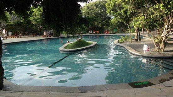 Cinnamon Wild Yala : La piscine