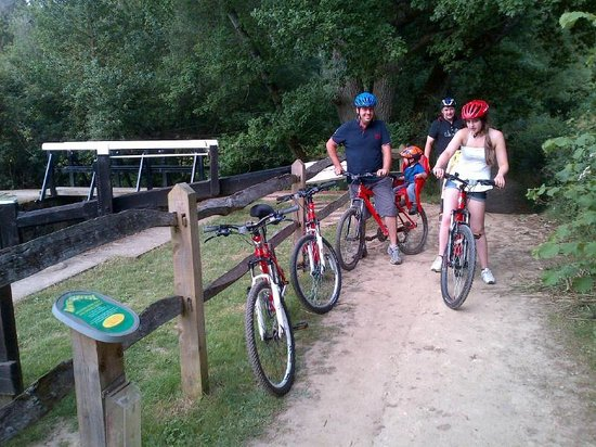 Billingshurst, UK: View of Baldwins Knob Lock on the Wey and Arun Canal Cycle Path
