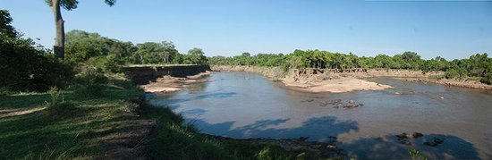 Governors' Il Moran Camp: Mara River and Hippos