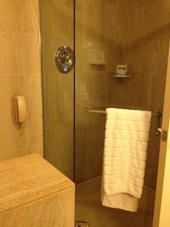Swissotel Chicago : Swissotel Bathroom