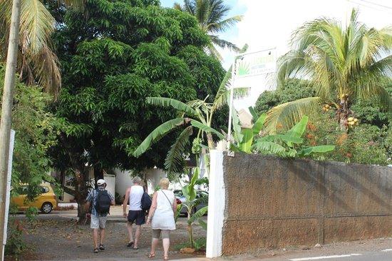 Le Cactus Guest House: Vue de la rue