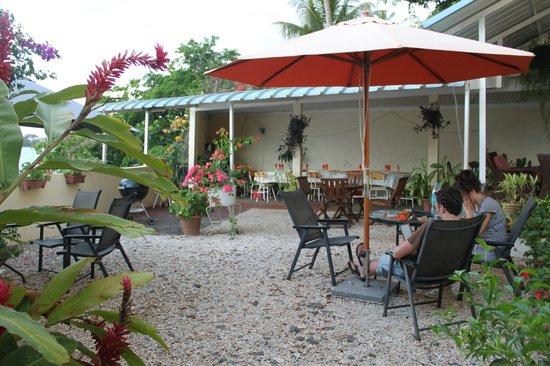 Le Cactus Guest House: Terrasse