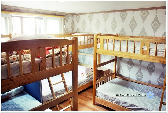 Whitetail Backpacker & Hostel : 6-Bed Mixed Dormitory