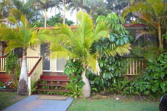 Ocean Park Motel: Üppige Vegetation rund um das Hotel