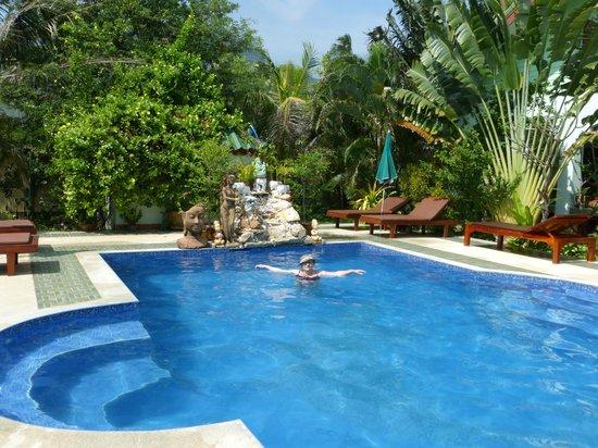 Paradise Home Resort: Schwimmpool