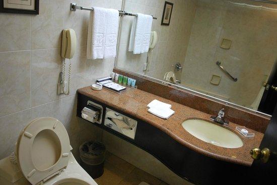 Grand Metropark Hotel Xi'an : baño