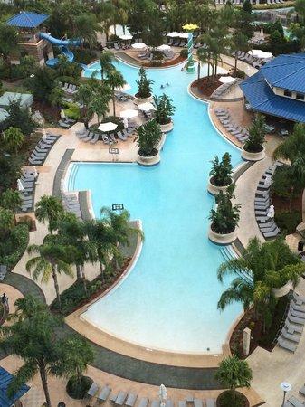 Hilton Orlando : Large pool area