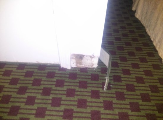 Quality Inn Historic East - Busch Gardens Area: Wall coming apart